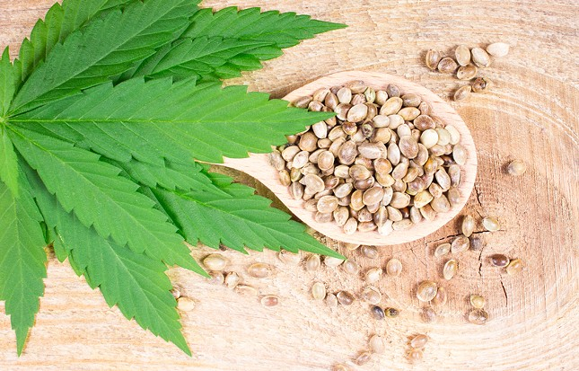 How to get Pot Seeds for Sale